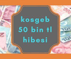 kosgeb başvuru şartları 2018